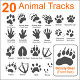 Animals Tracks - vector set Royalty Free Stock Photo