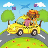 Animals traveling in taxi Royalty Free Stock Photos