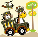 Animals troops. Vector cartoon of bear and giraffe on military truck going to battle field. EPS 10 Stock Image