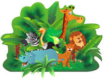 Animals in tropical jungle. Illustration of cute animals in exotic tropical jungle Stock Images