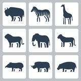 Animals of tropical zone icons set Royalty Free Stock Photos
