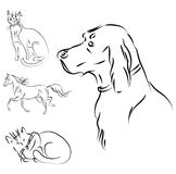 Animals vector. Vector animals sketch on white Royalty Free Stock Photo