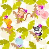 Animals royalty free stock photos