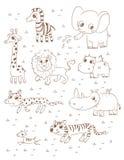 Animals wild Stock Image