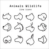 Animals wildlife line icons set 1 Royalty Free Stock Photo