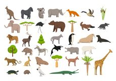 Animals of the world. A protected area, a hunting ground, a territory of the zoo Stock Images
