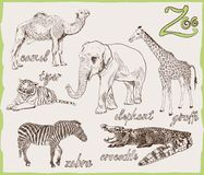 Animals from the zoo Stock Photography