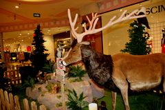 Animals, the zoo with stuffed animals on tour in Italy. It is a `park` that houses 144 life-sized soft toys that accurately reproduce the species belonging to royalty free stock photo