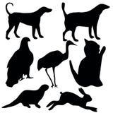 animalsymbols Royaltyfri Illustrationer