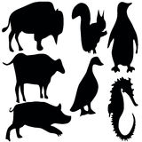 Animalsymbols Stock Photography