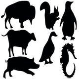 animalsymbols Vektor Illustrationer