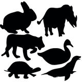 Animalsymbols Fotografia de Stock Royalty Free