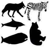 animalsymbols Στοκ Εικόνες