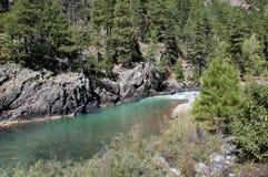 Animas Colorado U.S.A. del fiume Fotografie Stock Libere da Diritti
