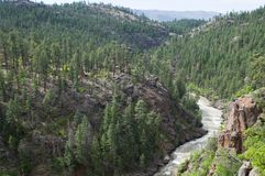 Animas River Stock Photography