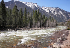 Animas River in Colorado Stock Image
