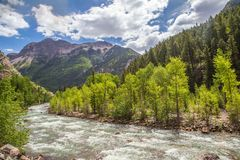 Animas River in Colorado Royalty Free Stock Image