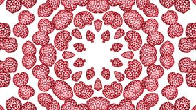 Animated background of red openwork shapes. 3d render. Abstract animated background of red openwork shapes. 3d render stock video