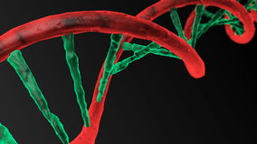 Animated DNA chain. Rotation DNA stock footage