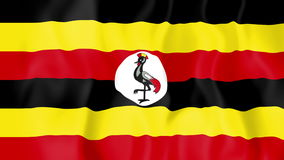 Animated flag of Uganda. In slow motion stock video