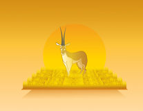 Animated gazelle in wild nature landscape Stock Images