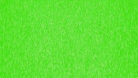 Animated heavy rainfall on green screen. 4K vector illustration
