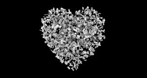 Animated of red heart shape of red rose petals, disintegration in red particles on black screen background with alpha channel stock footage