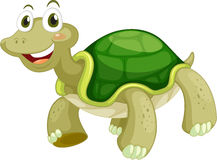 Animated turtle. On a white background Stock Photography