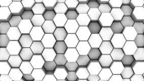 Animated White Honeycombs stock video
