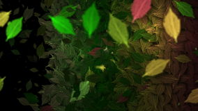 Animated winding leaves transition stock video footage