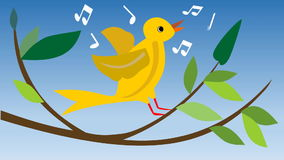 Animated yellow canary-bird. Singing canary-bird on branch with green leaves. Cute summer cartoon animation with bird.