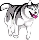 Animatie huskies vector illustratie