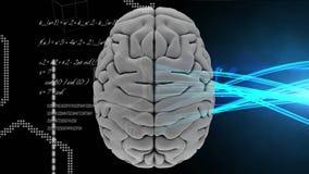 Animatie van de bovenkant van hersenen tegen hexagon vorm en lichtenlijnen royalty-vrije illustratie