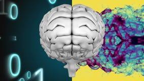 Animatie van grijze menselijke die hersenen in twee delen worden verdeeld stock illustratie