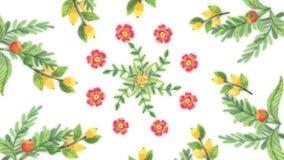 Animatie van het kweken van bloemen, bloemenachtergrond, bloeiende bloemen, botanisch patroon Decoratieve overgang met het groeie vector illustratie