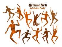 Animatie van menselijk lichaam Anatomie, mensen in motieconcept Silhouetten, vectorillustratie Royalty-vrije Stock Afbeelding