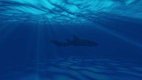 Animatie van oceaan onderwater met vissen stock videobeelden