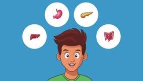 Animation de l'appareil digestif HD d'homme illustration de vecteur