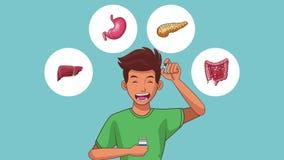 Animation de l'appareil digestif HD d'homme illustration stock