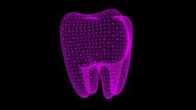 Animation dentaire de rayon X illustration libre de droits