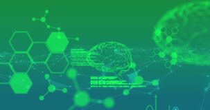 Animation of glowing human brains and hexagons with data processing on green background