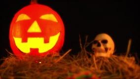 Animation heureuse de jour de Halloween avec le potiron lentern clips vidéos