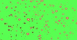 Animation - modern wie rosa Ikonenbewegungshintergrund stock video