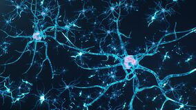 Animation neurons in the brain.Synapse and Neuron cells sending electrical chemical signals. Activity of electrical