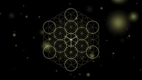Metatrons Cube and Platonic Solids