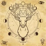 Animation portrait of a horned deer - spirit of the wood. Pagan deity. Circle of sacred geometry, phase of the moon, space symbols. Background - imitation of stock illustration
