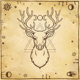 Animation portrait of a horned deer - spirit of the wood. Pagan deity. A background - imitation of old paper, esoteric symbols. Vector illustration. Print Royalty Free Stock Photo