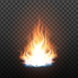 Animation Stage Of Bright Realistic Fire Vector vector illustration