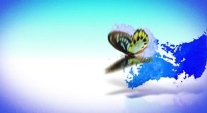 Animation style decorative transition with butterfly stock footage