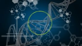 Turning DNA and moving white data on blue background. Animation of turning 3d DNA strand, with yellow circle, briefly appearing green and orange outline shapes royalty free illustration